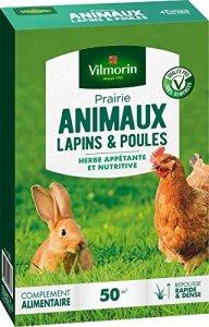 Vilmorin 4461312 Prairie Animaux Lapins et Poules, Vert, 5.80 x 14.5 x 22 cm