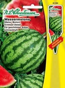 N.L. chrestensen 40388Semences de légumes, Jaune, 11,5x 0,5x 15,6cm