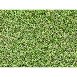 Gazon Du Sud le Step Gazon Synthetique, Vert, 100 x 100 x 1.9 cm