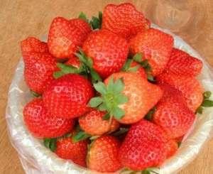 Livraison gratuite 100 grammes (env. 200.000 graines) Graines de fraises Heirloom Fraises bio fruits rouges comestibles A0001 (1)