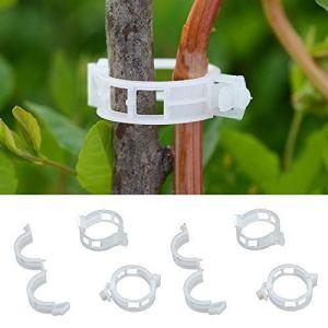 usine de plastique 100pcs soutien styhomsun 30mm durables pour les types plantes suspendues des légumes de serre ornement de jardin jardin de vigne