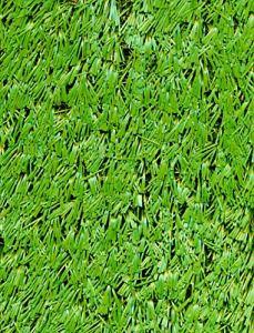 PEGANE Rouleau Gazon Artificiel d'extérieur en polypropylène Coloris Vert – Dim : 4m x 25m
