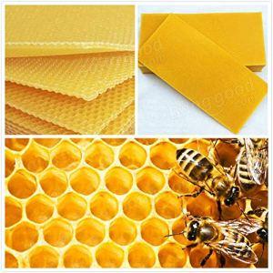 Générique Lot DE 30Nid d'abeille Fond de Teint Bee Hive Cadres de Cire épilation à la Cire Apiculture équipement Bee Hive Peigne Miel Cadres