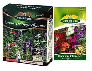 Point de rencontre papillon | 1x camélia balsamines gratuites (résistantes aux escargots) | maintenant prix d'action d'hiver