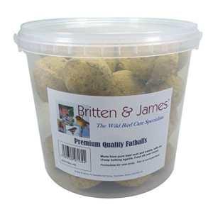 Britten & James 40 Boules de Graisse de qualité supérieure dans Un Contenant Pratique, Frais et Non refermable. l'un des Aliments énergétiques Les Plus concentrés et Les Plus Facilement métabolisés.