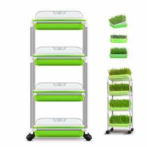 Huntfgold – Coquilles pour échelons Seed Sprouter Tray avec étagère 4 Couches sans BPA