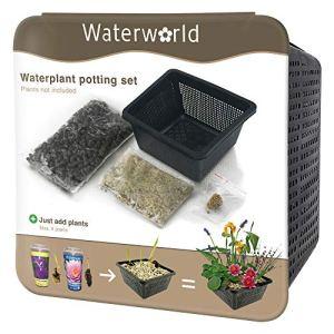 BOTANICLY | Plante aquatique – Waterworld Aqua Set – set de pots pour tous les types de plantes aquatiques (panier, étang, gravier, terreau et engrais pour plantes) | Hauteur: 10 cm