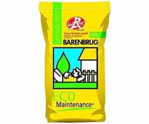 Semence gazon Barenbrug EM 2000