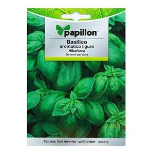 Graines aromatiques Basilico parfumées (5grammes)