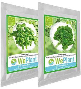 BIO Basilic & Persil – Graines de plantes aromatiques/Intérieur & Extérieur