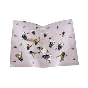 frais de livraison gratuite Insecte Tueur® Été chatoyant Glue papier mouches pièges piège attrape insectes receveur insectes blanc