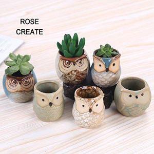 Rose créer 6pcs 6,3cm Chouette Pots en céramique, Little Succulente bonsaï Pots avec un trou–Lot de 6