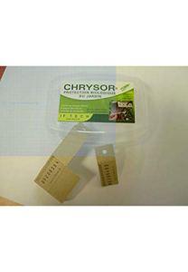 Achat nature – CHRYSOR par 4 bandelettes soit 120 oeufs de chrysopes