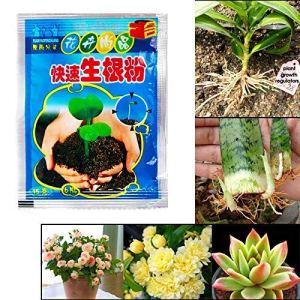 Fishyu 10 Sacs Rapide L'Enracinement Powder Agent pour Fruit Tree Coupe Fleur Plantes