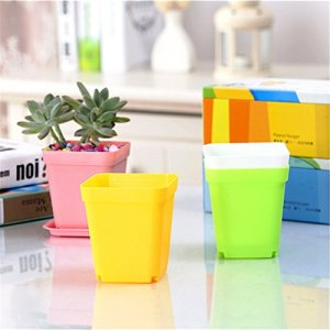 Edhua 1pcs mini Gardening Plastic Flower Pot including tray Vase square flower planter Bonsai Nursery Pot color random