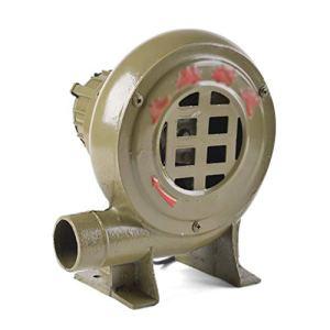 Lee 54067 ADKINC Souffleur de Feuilles de 200W 400 PCM, Souffleuses de Feuilles, Souffleur d'air avec Moteur en cuivre intégral
