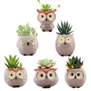 Lewondr Pots de Fleurs pour Plante Succulente, [6 Pièces] 2,5 Pouces de Pot de Fleur de Hibou, Bonsai en Céramique, Plante en Pot, Cactus – Coloré 02