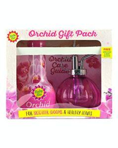 Baby Bio Orchid Coffret Cadeau