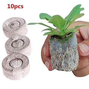 10 PCS Pellets de sol, Bloc de sol de semis, 100 Count Jiffy Peat Pellets Soil Pellets Seeds Prise de démarrage pour la plantation en intérieur Jardin Transplantation, 30MM