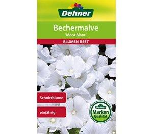 Dehner Semence de Fleurs Mont Blanc 1 g