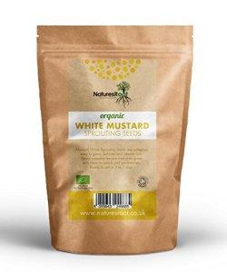 Natures Root – Graines bio moutarde – Jaune – Pour germination -Micro pousses vertes – Plantation de jardin – Jardinage de légumes 250g