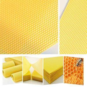 Keior National Brood Lot de 30 Feuilles de Fond de Teint, Cire d'abeille, pastilles de Cire d'abeille pour Ruche Nationale 30pcs