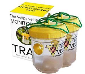 PCP Group, Le piège de surveillance de Vespa Velutina pour les frelons asiatiques 2 x pièges