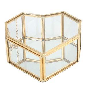 Terrarium géométrique Récipient pour plantes en verre transparent Support de plante à air en forme de coeur distinctif pour plantes à air succulentes Fern Moss Jardin de fées miniature bricolage