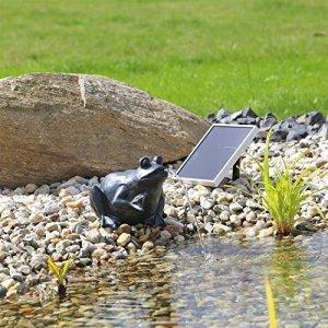 CLGarden NSP9 Solaire Gargouille grenouille CLGarden Fontaine pour bassin avec pomp