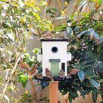 Nichoir Oiseaux Oiseau en Bois Table De Jardin Birdhouse Abritée Alimentation Station Portable Autoportant Alimentation Table Station House Oiseaux Jardin et Extérieur