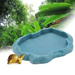 Tianhaik Reptile Bol d'alimentation Tortue Lézard Caméléon Résine Alimentaire Plat d'eau pour Animaux de Compagnie Aquarium Ornement Terrarium Plat Assiette