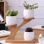 WBFN Pots de Fleurs Pots Creative Succulent Plant Pot de Fleurs en céramique Porte Motif Hibou Pot arboricole en Forme de Bambou Shelf Pot Planteur Set for Bureau (Color : White)