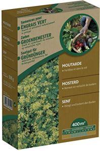 Générique Moutarge Blanche – Engrais Vert pour Le Potager 500 g – évite Les Mauvaises Herbes – enrichit Le Sol – Bloque la Propagation des nitrates