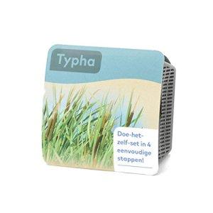Moerings Kit Complet pour Plantes Aquatiques – Typha