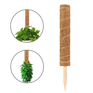 Thrivinger 50-80cm Coir Moss Stick Coir Moss Totem Pole, Coco Coir Poles, Plant Support Totem Pole for Plant Support Extension, Climbing Indoor Plants, Creepers