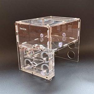 WCX 1PCS 30 Calibre Sinking Quatre Tube Acrylique Bamboo Ant Nest ne Contient Pas des Fourmis Tube à essai Ferme des Insectes Box