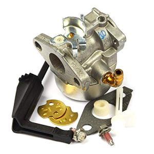 Ningye 798653 Carburateur remplace 697354/790290/791077/698860/790182
