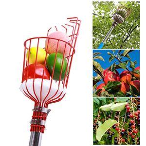 RecoverLOVE Panier de cueillette de Fruits avec Coussin, cueilleur de Fruits avec Poteau Amovible en Acier Inoxydable, Outil de cueillette de récolteuse de Fruits du verger avec Sac