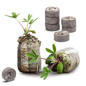 Danolt 36 Pcs Plantes Pastille de Fibre – Le Sol compressé Se dilate avec de l'eau pour la Plantation d'herbes, de Fleurs et de légumes, Facile à Transplanter.