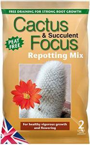 Mélange de rempotage Cactus Focus 2litres