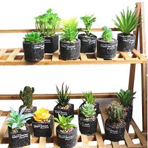 TTaceb Plante Artificielle Interieur Plantes Artificielles Décor à la Maison Décorations Grave Plantes d'intérieur Véranda Décor Bureau Décor Random,1pc