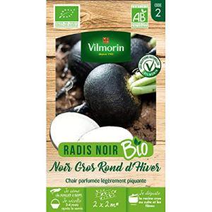 Vilmorin – sachet graines Radis Noir Gros Rond d'hiver BIO