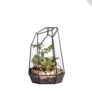 Boîte de table en forme géométrique Terrarium pour plantes 19 cm de haut Pas de plantes