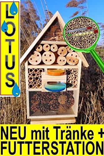 BTV Maison à insectes en bois à suspendre Taille XXL