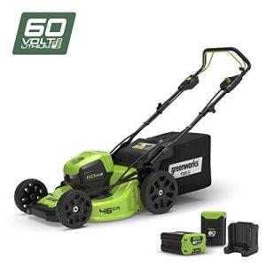 Greenworks Tools Tondeuse à gazon autotractée sans fil 46cm 60V Lithium-ion avec 2 batteries 2Ah et chargeur – 2502907UC