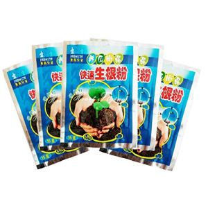 Paquet de 5, Poudre d'enracinement Rapide, Racine Extra-Rapide pour la greffe de Fleurs de Plantes