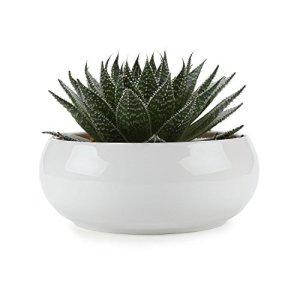 T4U 16.5CM Pots En Céramique Base Blanc Série/Plante Succulente/Plante en Pot/Cactus/Pot De Fleur/jardinière/Cultiver