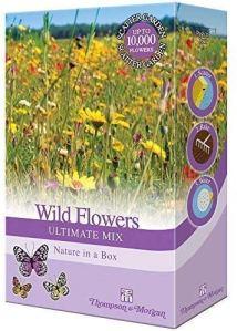 Wildflowers Jardin Plante Graines Cultivez Votre Propre Coquelicots ,Prés Fleurs & Herbes 1 X 15g Assortiment Paquet par Thompson & Morgan