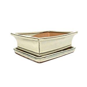 Bol à bonsaï en céramique – Blanc – Pot de fleurs de qualité supérieure avec soucoupe/bol – Pour l'intérieur et l'extérieur – Ovale – 21 cm