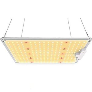GYNFJK Grow Light, 1000 LED élèvent des lumières avec Samsung Chips Dimmable Mean Well Driver, Full Spectrum 3000K 5000K 660Nm IR Grow Lights pour Plantes d'intérieur Veg and Flower